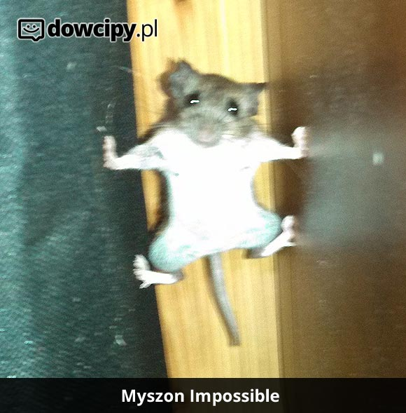 Myszon Impossible!