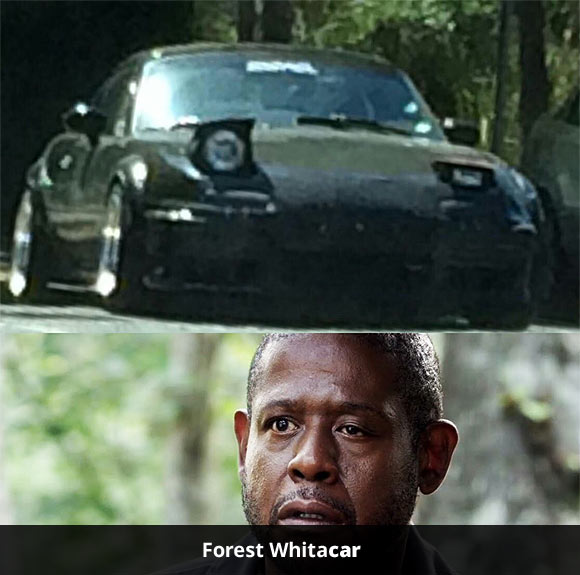 Forest Whitacar.